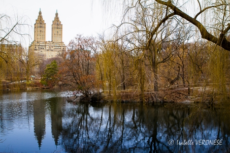 2014-03-23 new york570 - web