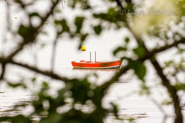 2012-05 morbihan-121 - blog