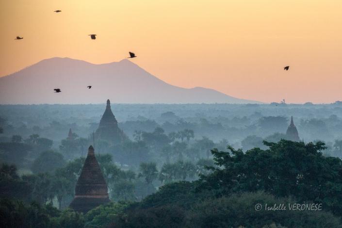 2016-11-14-2016-11-birmanie764
