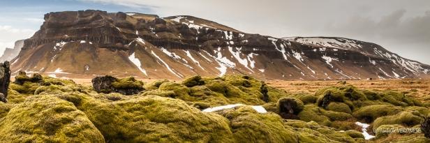 Islande, Champ de lave du Laki