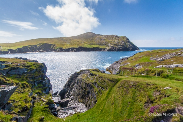 Irlande. Péninsule de Beara - Dursey Island