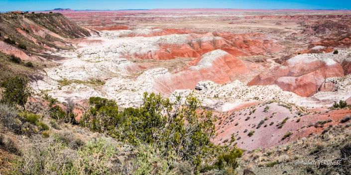 Route 66 arizona Painted desert